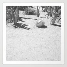 Cacti - in Black & White Art Print