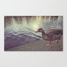 :: walk the line :: Canvas Print