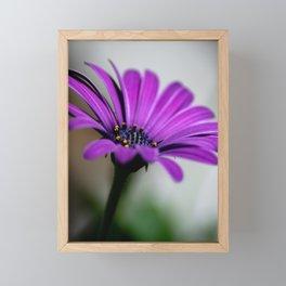 Frail in the garden Framed Mini Art Print
