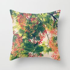Royal Poinciana Colors Photograph Throw Pillow