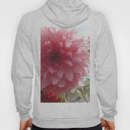 Pretty Pink Dahlia Ruffles Hoody