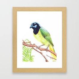 Chara Verde Framed Art Print