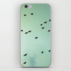 Art Of Flight #1 iPhone & iPod Skin