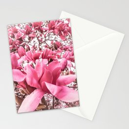 Mellow Magnolia Stationery Cards