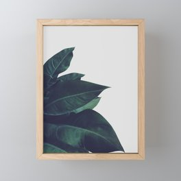 Enlighten Framed Mini Art Print