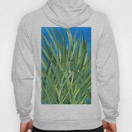 Grassy Pond Blue Green Hoody