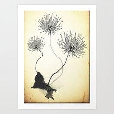 Thistles Art Print