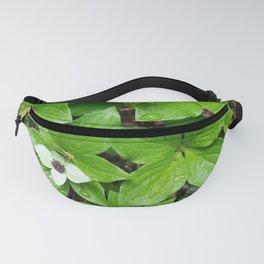 Canadian bunchberry Fanny Pack