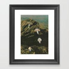 171.  Framed Art Print