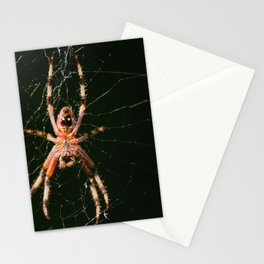 Spotted Orbweaver Stationery Cards