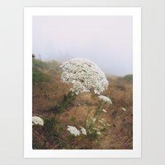 Flower in Fog Art Print