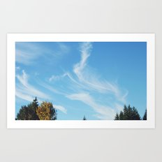 Feathers in the Sky Art Print
