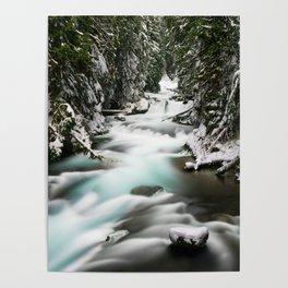 The Wild McKenzie River Adventure Poster