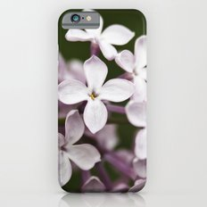 Lilac blossoms Slim Case iPhone 6s