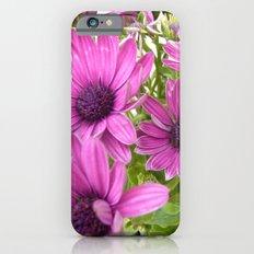 Violet iPhone 6s Slim Case