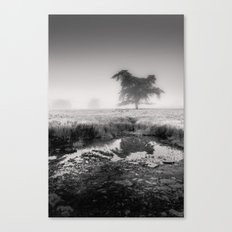 Tree in Marshland - Black and White Collection Canvas Print