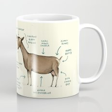 Anatomy of a Goat Mug