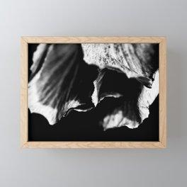 Folds Of Life Framed Mini Art Print