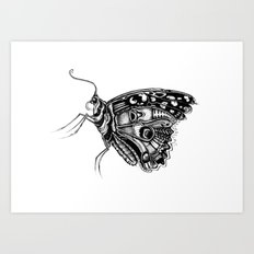 Pretty Fly For A Butterfly Art Print