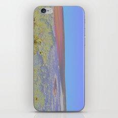 Chromascape 5: Formentera iPhone & iPod Skin
