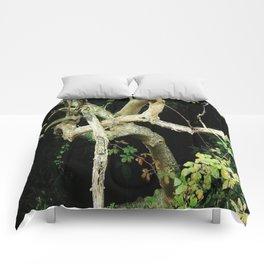 Green Perspective Comforters