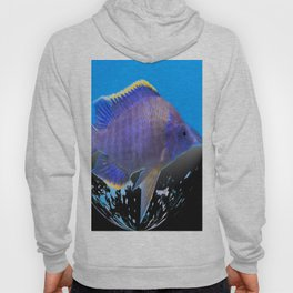 Fish of the Earth Hoody