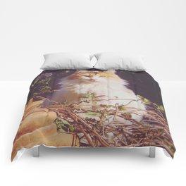 Staring Stranger Comforters