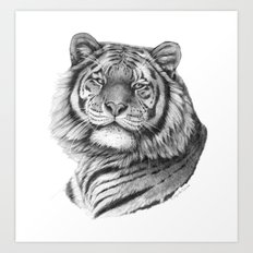Siberian Tiger G101 Art Print
