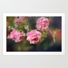 Pink Drift Art Print
