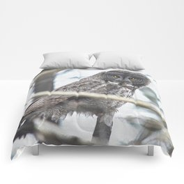 Let Us Prey - Great Grey Owl & Mouse Comforters