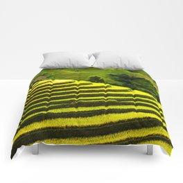 Duvet Cover 407D Comforters