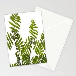 Green Rowan Leaves White Background #decor #society6 #buyart Stationery Cards