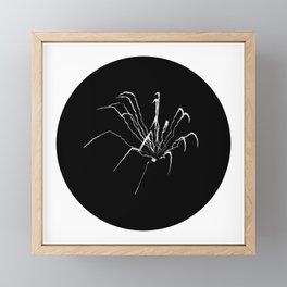 """Fireworks   """"Spider (Skeletal)""""   White (Circle ver.)   [D0949~03_015] Framed Mini Art Print"""