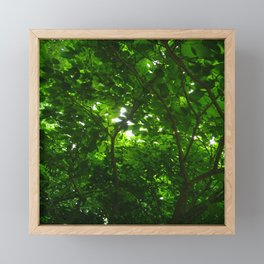 Deep Green Forest Framed Mini Art Print