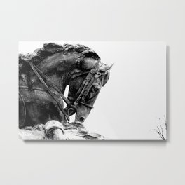 The Noble Steed  Metal Print