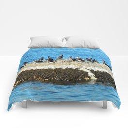 Cormorants Basking on The Big Rock Comforters