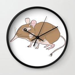 Elephant Shrew Wall Clock