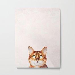 Cute Cat Stare Metal Print