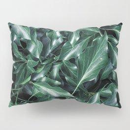 Ivy 01 Pillow Sham