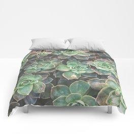 Succulents 2 Comforters