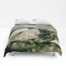 Seaweed and Seashells Coastal Nature Photography Comforters