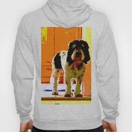 Pup on Stairs Hoody