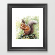 Squirrel and Nut Forest Animals Watercolor Framed Art Print