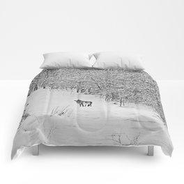 Coyotes Art Decor. Comforters