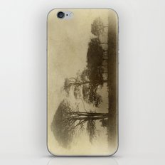 Tallest Tree First iPhone & iPod Skin