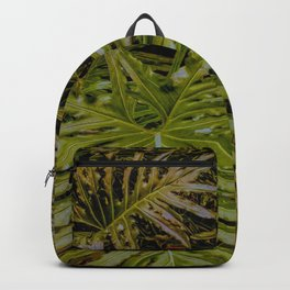 Monstera Deliciosa Tropical leaf Pattern Backpack