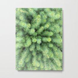 Tree Planting Metal Print