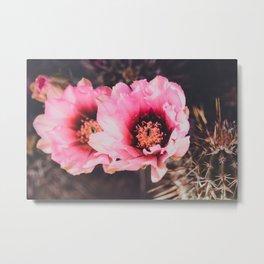Faded Desert Blooms Metal Print