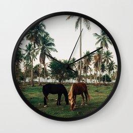 Horses in Samana, Dominican Republic Wall Clock