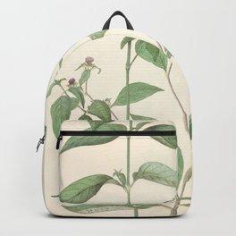 Growing plants Backpack